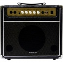 AMPLIFICATOR CHITARA 40W NEGRU MADISON