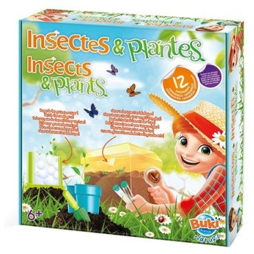Insects & Plants