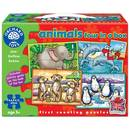 Orchard Toys Animals