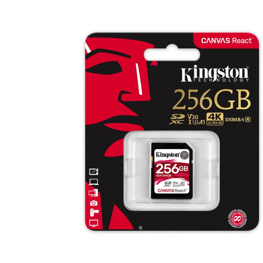 Card memorie SDXC 256GB CL10 UHS-I