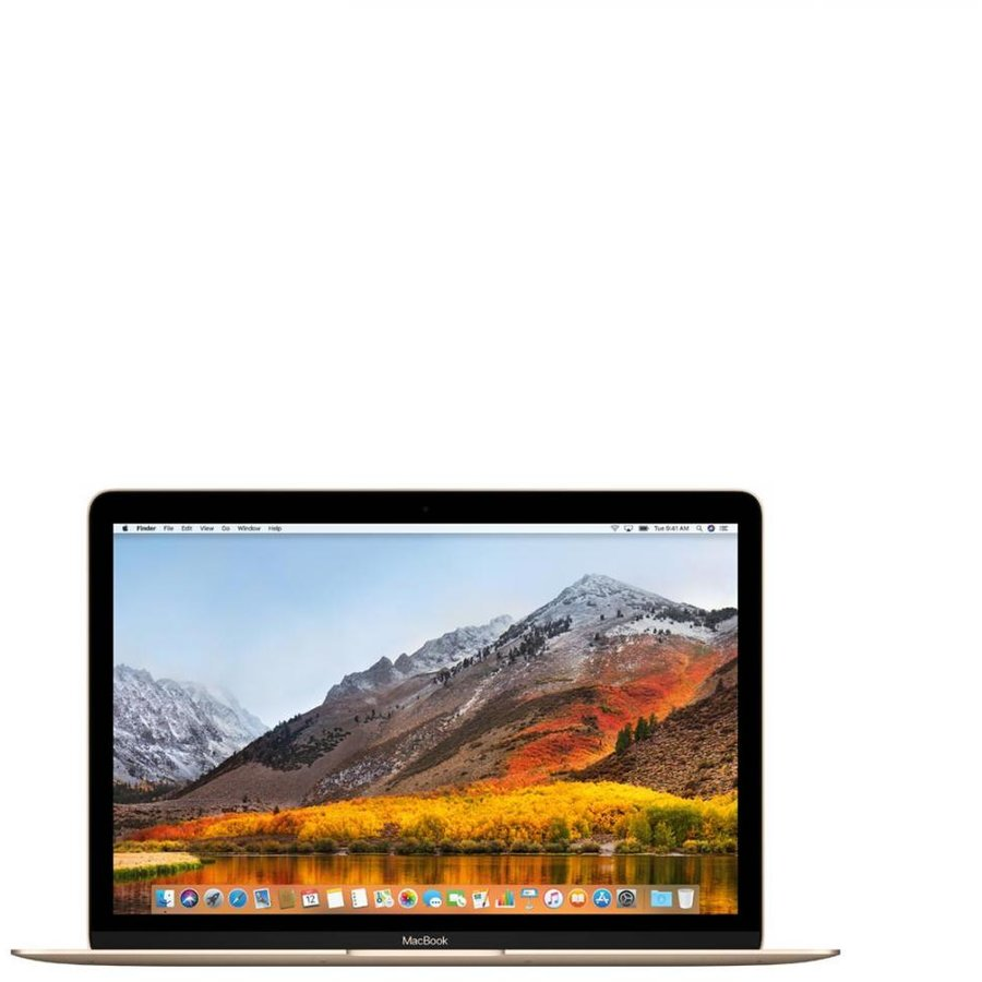 Notebook AL MB 12 INTEL-M3 8GB 256GB OSX RO GLD