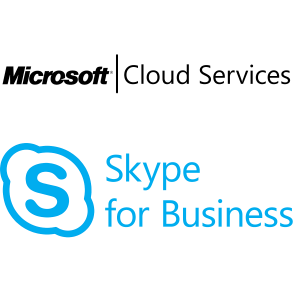 Skype for Business Online Plan 2 Open Shared Single Monthly Subscriptions-Volume License OPEN 1 License No Level Qualified Annual