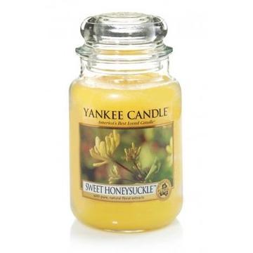 Candle in the glass YANKEE home YSDSHS (170 mm x 110mm)
