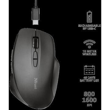 Mouse Trust Themo Rechargeable Wireless Mouse