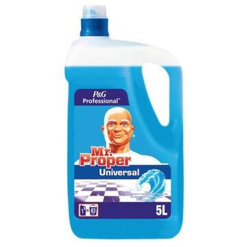 Mr. Proper Proffesional for floors and various surfaces Ocean 5l