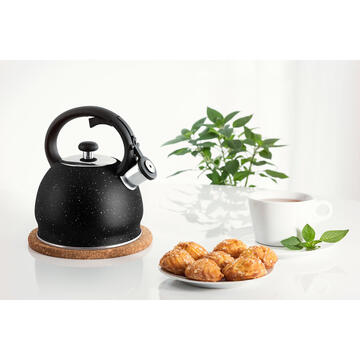 Kettle PROMIS TMC 11 MATEO 2 liters INDUCTION, GAS